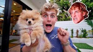 Jake Paul and his doggie