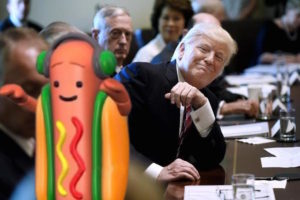 The Donald and The Dog